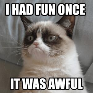 I had fun once, it was awful.