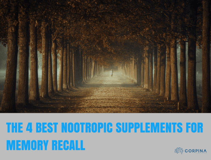 The 4 Best Nootropic Supplements for Better Memory Recall