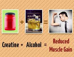 drinking after taking creatine reduces muscle gains