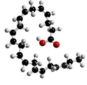 docosahexaenoic-acid 3d chemical structure