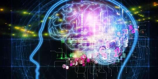 brain-cognitive