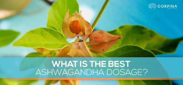 What Is The Best Ashwagandha Dosage?