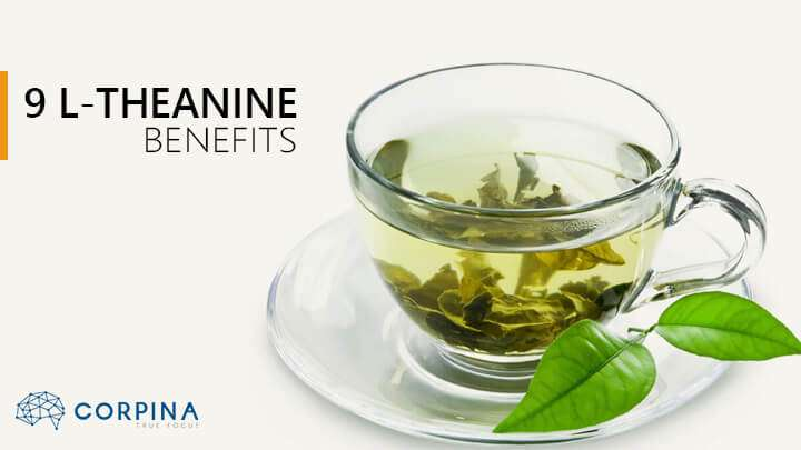 does l theanine help with weight loss