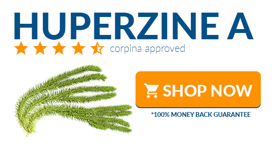 where to buy huperzine-a online